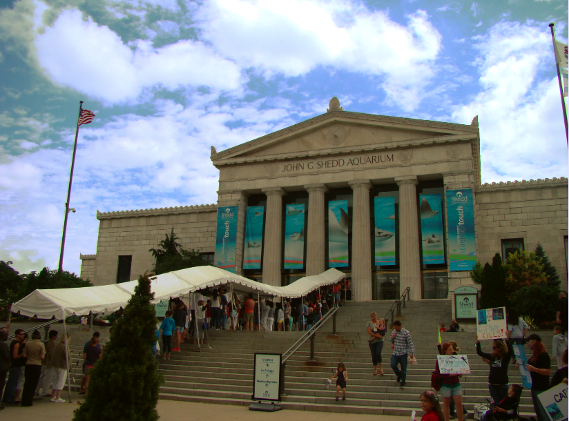 The Shedd Aquarium Museum Campus Chicago Illinois