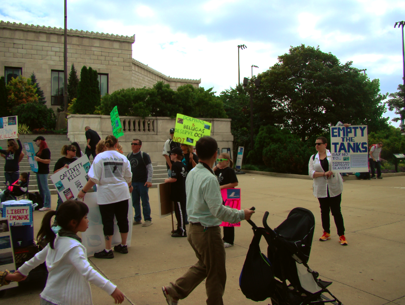 peaceful-protest-outside-shedd-aquarium-museum-campus-chicago-il-usa-manufactured-home-living-news-