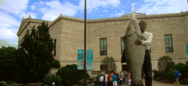 The Shedd Aquarium, Museum Campus, Chicago, Illinois, USA Destinations