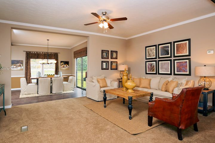 the-greenwich_southern-energy--posted-manufactured-home-living-news-206_living_0303-1