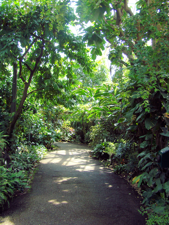 walking-path-tropical-dome-milwaukee-wi-usa-destination-manufactured-home-living-news