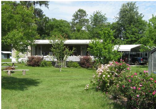 Betaalbaar, Eco-Friendly Green Modular Homes - Green Homes - MOEDER AARDE NIEUWS