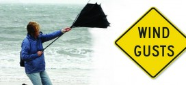 disaster-safety-org-image-credit-wind-graphic_IBHS-