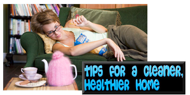 TipsForCleanerHealthierHome_MHLivingNewsGraphicStockManufacturedHomeLivingNews