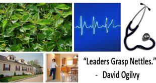 LeadersGraspNettlesDavidOgilvyPhraseMeaningExplainedMHLvingNews